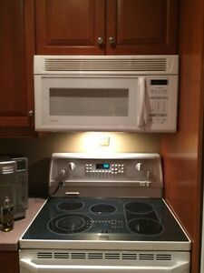 Microwave left  Kitchener / Waterloo Kitchener Area image 1