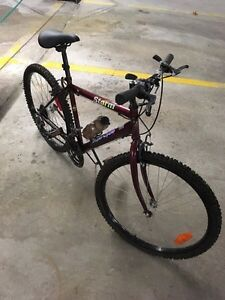 SuperCycle - storm for sale *great shape*