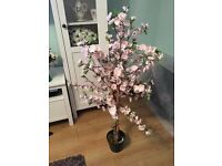 2 x 3ft cherry blossom artifical trees used for our wedding