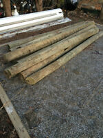 8' treated fence poles