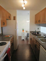ONE bedroom condo LRT Downtown U of A NW Clareview aparment rent