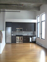 Loft Imperial/786 sq feet Downtown condo Loft/Indoor Parking