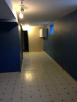 Interior and exterior Professional Painting services