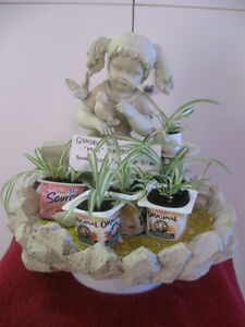 ADORABLE MINIATURE INDOOR GARDEN FLORAL PLANT DISPLAY