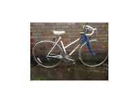 Ladies classic /retro toad bike