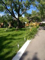 Lawn and Gardening Flowers Trees Top Soil Mulch Landscaping