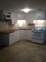Bright 2 bedroom basement apartment in Skyline Acres Fredericton