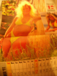 Sunshine Girl Calendar 1991 Peterborough Peterborough Area image 8