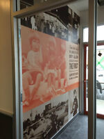 commercial vinyl wallcoverings, murals and wall graphics