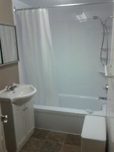 FULLY FURNISHED & EQUIPPED 1 BEDROOM APARTMENT NEAR WINDSOR Windsor Region Ontario image 5