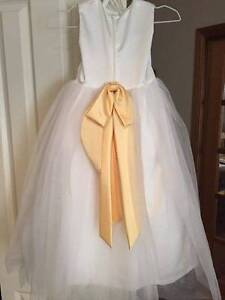 Flower girl dresses - never worn, direct from US Jerrabomberra Queanbeyan Area Preview