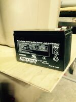 Alarm system battery's