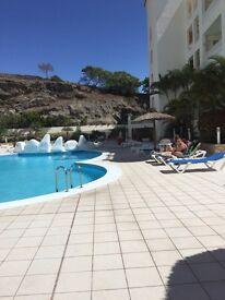 Apartment- one bedroom - Golf del Sur, Tenerife