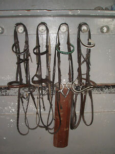 Horseback riding equipment Peterborough Peterborough Area image 1