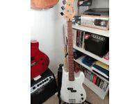 bass guitar plus hardcase