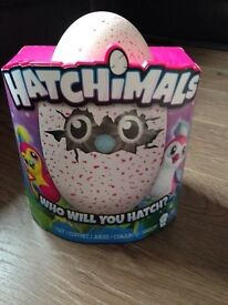 Pink hatchimal Brand new ready and waiting for pick up