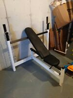 Northern Lights Incline/Flat Bench