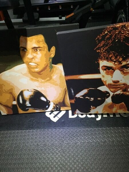 2 X Boxing Painted Canvases Mohammed Ali & Raging Bul