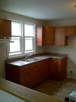 Totally Renovated Apt in Buiding on Bus Route