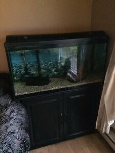 Aquarium Hagen/Hagen fish tank( SUPER DEAL!!!!!!)