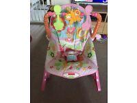 Fisher Price Toddler to Newborn chair.