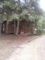 Meeting Lake Cabin for Sale