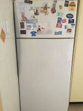 Fisher and Paykel Active Smart 517L Fridge Very Good Energy Ratin Hurstville Grove Kogarah Area Preview