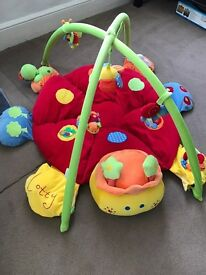 Mamas and Papas Lotty Ladybird Play Mat