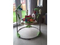 Excellent condition jumperoo
