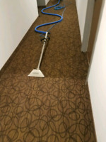 $99 Deep Steam Carpet Cleaning Special Residential and Commerci