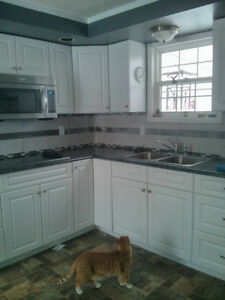 Discount kitchen and vanity countertops