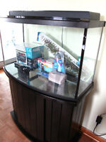 New Fluval 45 Gallon Bow Front Fish Tank Complete Set up