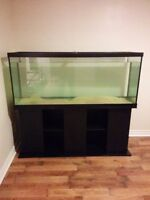 120 gallon aquarium with matching stand