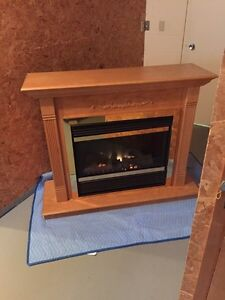 Electric Fire place  Kitchener / Waterloo Kitchener Area image 1