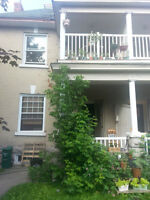 Room for Rent in the Glebe ALL INCLUSIVE July - Aug