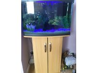 64 Litre Fish Tank and Stand VGC