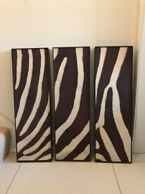 Brown in cream zebra canvas wall picture