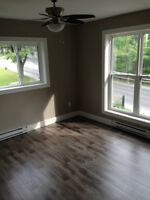 Newly Renovated 2 Bedroom Apartment With Loft, 71 Park Street