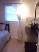 Furnished 1 bedroom for rent in Orleans $450 available May June