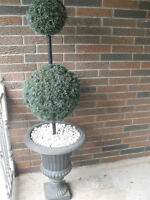 Black Cast Iron Urn with Topiary Tree $85.00