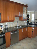 Beautiful 2-bed/2 bath - August 1 - Westboro/Tunney's Pasture