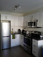 Newly Renovated 1 Bedroom Furnished Apartment - Leslieville