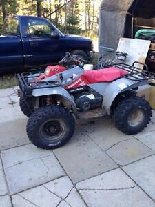 2 stroke 4x4 Polaris quad