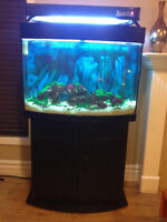 40 Gallon Salt Water Fish Tank w/ Stand and supplies to maintain