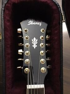 Ibanez 12 String Acoustic with Pick Ups and Hard Case
