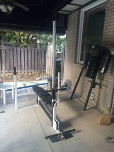 Home gym  Windsor Region Ontario image 4