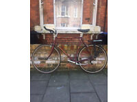 Classic Road Bike with - 12-Speed Peugeot - Great Commuter