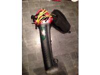 Leaf blower /hoover