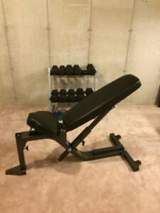 Northern Light Top Line Adjustable Bench no dumbbell squat rack