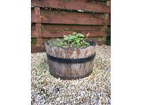Half Whisky Barrel Planter Tubs x 2